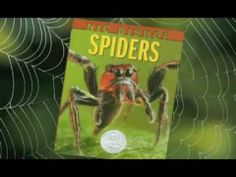 NIC BISHOP SPIDERS by NIC BISHOP.  Don't watch this if you have arachnophobia (i.e. the fear of spiders!) Nature photographer shows you how he gets the great shots of the spiders that fill this book.  Official video by ScholasticKids.