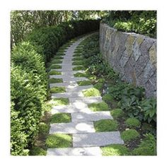 I really like this arrangement of pavers.....perfect for a one person stroll in the garden.