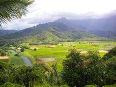 Farmland below Princeville, Kauai