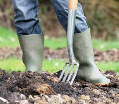 3 Ways to Prep Your Garden for Fall and Winter, the Traditional Farmer's Way