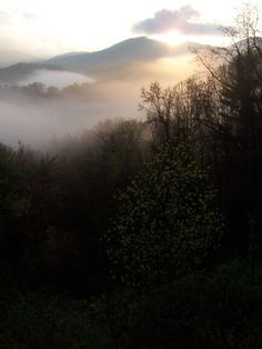 Mystical mountains of NC.