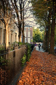 Autumn in Liverpool, England