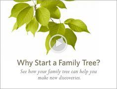 Ancestry.com Love genealogy