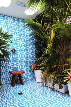 outdoor tiles add some serious colour to a backyard with sumptuous groupings of potted plants that include bromeliads and palms