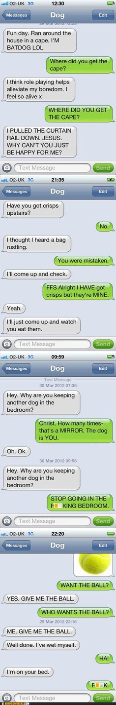 I'm rethinking my position on dogs having phones...funny!!