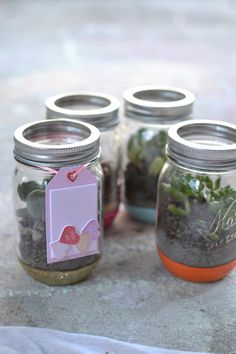 Easy Glittered Mason Jar Terrariums. This is #1 of 12 crafts we are creating for @Martha Stewart @MarthaStewartLiving. #12MonthsofMartha #MarthaStewartCrafts