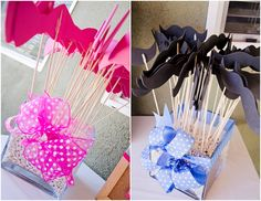 Bow or Beau? Gender Reveal