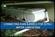 Linked rain barrels