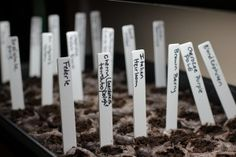 Way fun gardening website, with lots of great ideas!