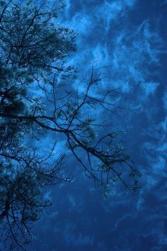 Blue Moonlight Abstract