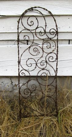 Bodacious Barbed Wire Trellis Bristling With by thedustyraven