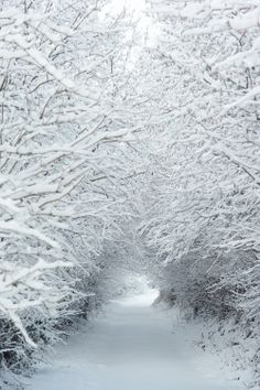 snow tunnel, Wales