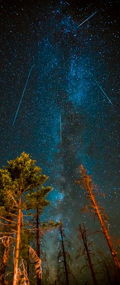 Perseids Meteor Shower 2012