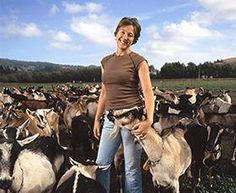 Dee Harley USA goat cheese producer #goatvet Use my hints to increase your goat milk production http://www.goatvetoz.com.au