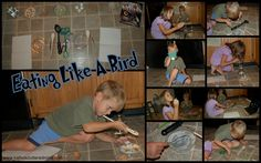 Bird Beak Comprehension - Eating Like A Bird from Kathys Cluttered Mind