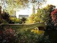 central park, bow bridg