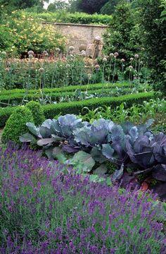 Rosemary Verey's Potager Kitchen vegetable garden