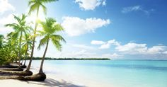 beach view, bones, winter escap, bone chill, tropical beaches, place, cana resort, caribbean, blues