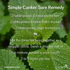 Simple Canker Sore Remedy