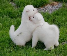 cuteness..