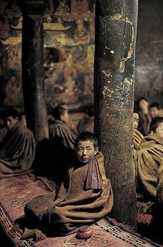 Young Tibetan monks