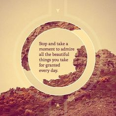 Stop.  Take just one moment...