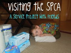 """Pennies of Time: Spending """"Pennies"""" with Friends: Serving the SPCA.  Invite friends to come along when you visit the SPCA.  Teach children to serve."""