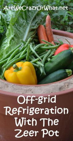 Off-grid Refrigeration With The Zeer Pot~AreWeCrazyOrWhat.net