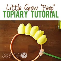 Little Grow Peep Topiary Tutorial! How cute is this?? #easter #decor #diy from howdoesshe.come