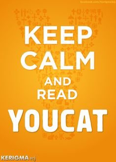 """YOUCAT is the Catholic catechism for teens - and is super fabulous for adults.  Seriously, I LOVE this book.  And I may be """"slightly"""" out of my teens, haha!  Get the YOUCAT if you are interested in understanding the faith."""