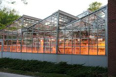 greenhouses at Iowa State University