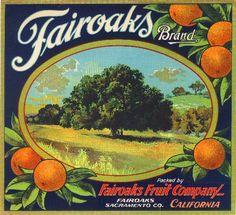 Home › ASLICEINTIME  Fairoaks Sacramento County Orange