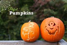 Carving The Perfect Pumpkin is easy with the right tools!
