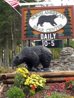 North American Bear Center  Ely, Minnesota  www.bear.org