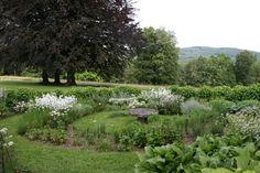 jardin du mas maury-haut