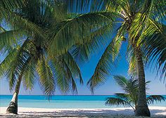Grand Cayman - Seven mile beach The warmest water you will ever feel !!! Was just stunning