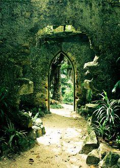 Natural green doorway