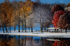 Fall and winter coming together. | Photo by Rob Blair, via Munroe Falls Metro Park on Facebook | #TREEmendous #WinterTrees #FallFoliage #TreePhotos