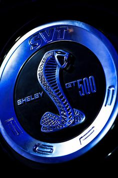2013 Ford Mustang Shelby GT 500 - by Gordon Dean II