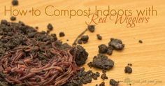 How to Compost with Red Wigglers GoodGirlGoneGreen... #worms #redwigglers #compost #composting