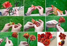 How To Make Maple Leaf Roses