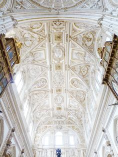 mosques, ceiling detail, france, ceilings, beauty