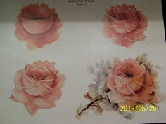 paint roses china painting