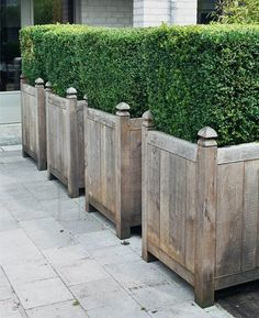 Minus the Boxwood - I'll fill mine with other evergreens and flowers to create a privacy screen for the patio!