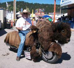 Buffalo biker