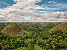 The Chocolate Hills of Bohol. Philippines.