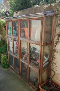 old wall 'coldframe'....great idea for protecting plants in the cold