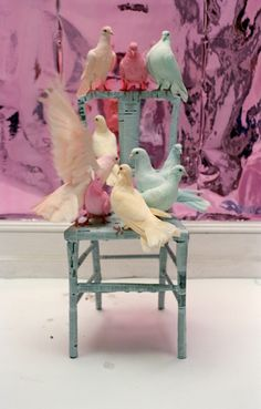 pastel doves