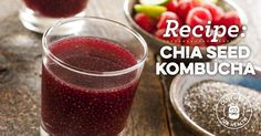 Lots of Kombucha rec