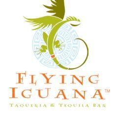 Flying Iguana Jacksonville